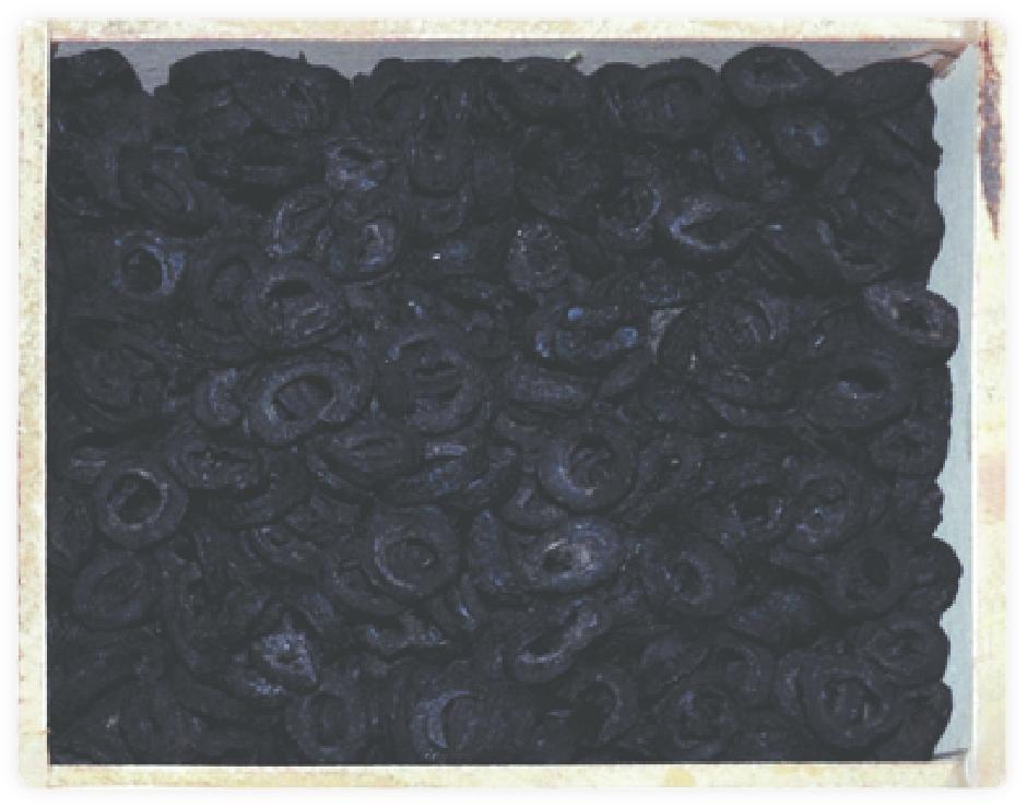 Olives negres