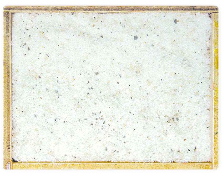 Sal de tòfona amb tuber aestivum