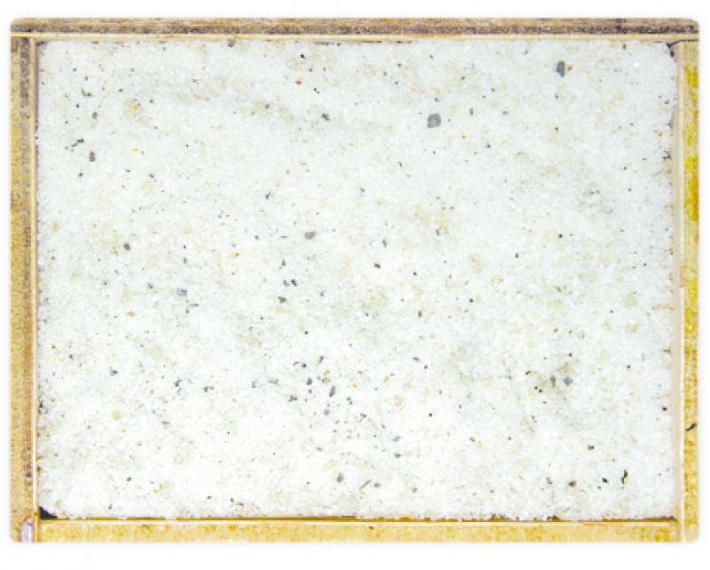 Sal de trufa con tuber aestivum